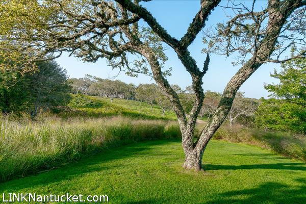 14 Almanack Pond Road