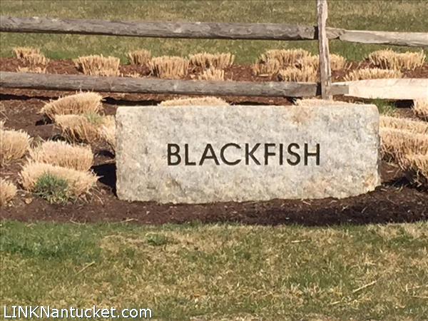 5 Black Fish Lane