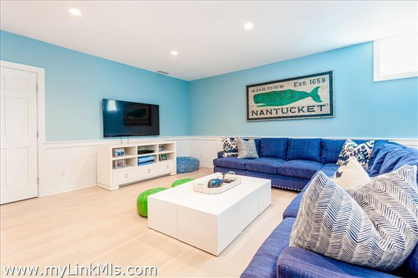 Lower Level - Fabulous Family Room