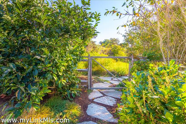 Path to gardens
