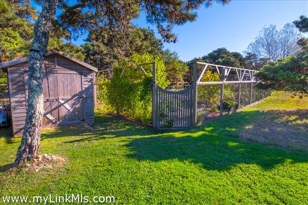 garden and garden shed