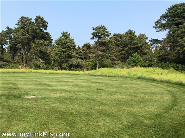 BACK YARD ABUTTING CONSERVATION LAND WITH WALKING PATHS